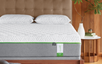 tempur-pedic TEMPUR-Flex mattress